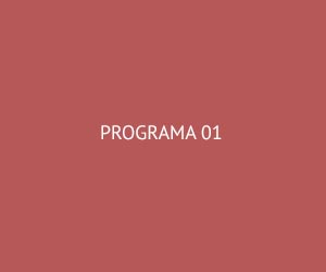 programa1.jpg
